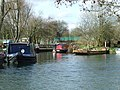 Narrowboats on the River Stort - geograph.org.uk - 708999.jpg