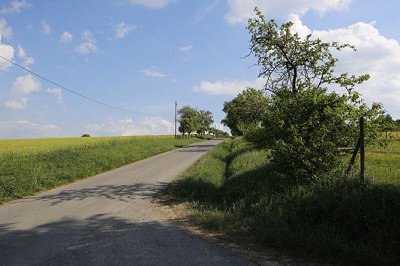 File:Naturdenkmal Obstbaum- und Lindenallee am Dreispitz, Kennung 81150530016, Jettingen-Sindlingen 07.jpg