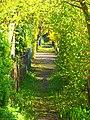 Nature - panoramio (49).jpg