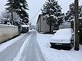 Neige à Saint-Maurice-de-Beynost (Ain, France) - décembre 2017 - 13.JPG