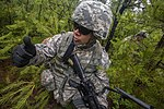 New Jersey National Guard and Marines perform joint training 150618-Z-AL508-009.jpg