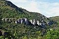 Nice rock (chalkstone of the Causses) - panoramio.jpg