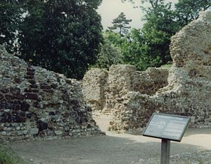 Bishop of Norwich - Remains of the Saxon cathedral at North Elmham