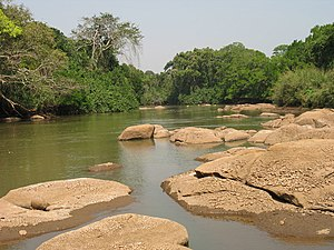 Noun River (Cameroon) - The Noun River, during the dry season, a few kilometers after Bandjoun