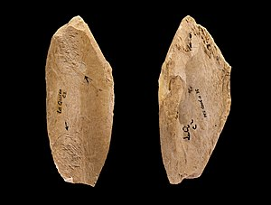 Neanderthal behavior - Image: OS La Quina MHNT PRE.2006.0.35