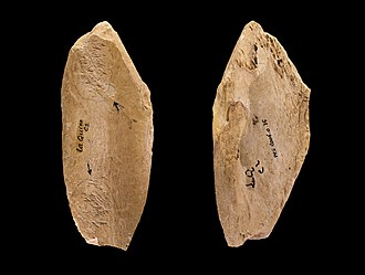 Neanderthal behavior - A Mousterian tool retoucher on a bone-shaft from the French site of La Quina, used to modify stone tools.