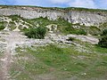 Old Quarry , Chalbury - geograph.org.uk - 832156.jpg
