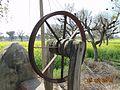 Old well in yard.jpg
