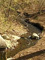 Olmsted-Park-Muddy-River.jpg