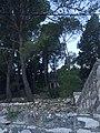 Općina Šolta, Croatia - panoramio (11).jpg