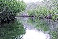 Othón P. Blanco, Quintana Roo, Mexico - panoramio - Juan Ortega.jpg