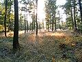 Přírodní park Baba386.jpg