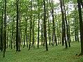 Přírodní park Baba923.jpg