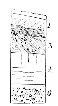 PSM V12 D083 Soil layers of glacial activity.jpg