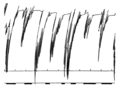 PSM V81 D311 Oscillations of the esophagus by a pneumograph.png