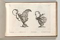 Page from Album of Ornament Prints from the Fund of Martin Engelbrecht MET DP703625.jpg