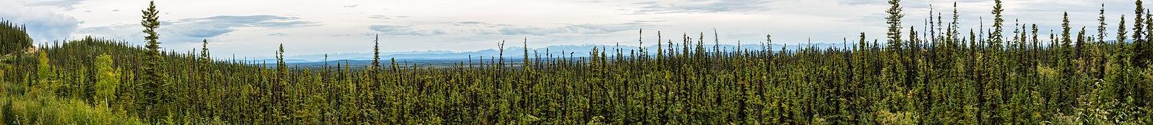 Paisaje en el Refugio Nacional de Vida Silvestre Tetlin, Alaska, Estados Unidos, 2017-08-24, DD 78-90 PAN.jpg