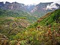Paisatge del camí de San Pedro de Valera a la catarata13.jpg