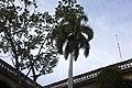 Palacio de los Capitanes generales-3.jpg