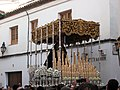 Palio de María Santísima de Gracia y Amparo.jpg
