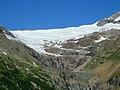 Paluegletscher 2009 5.jpg