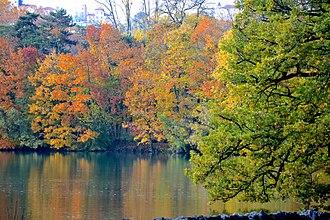 Parc de la Tête d'or - The park of the Golden Head.
