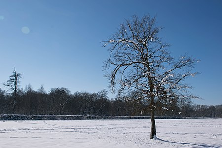 Parc du château de Rambouillet 20.jpg