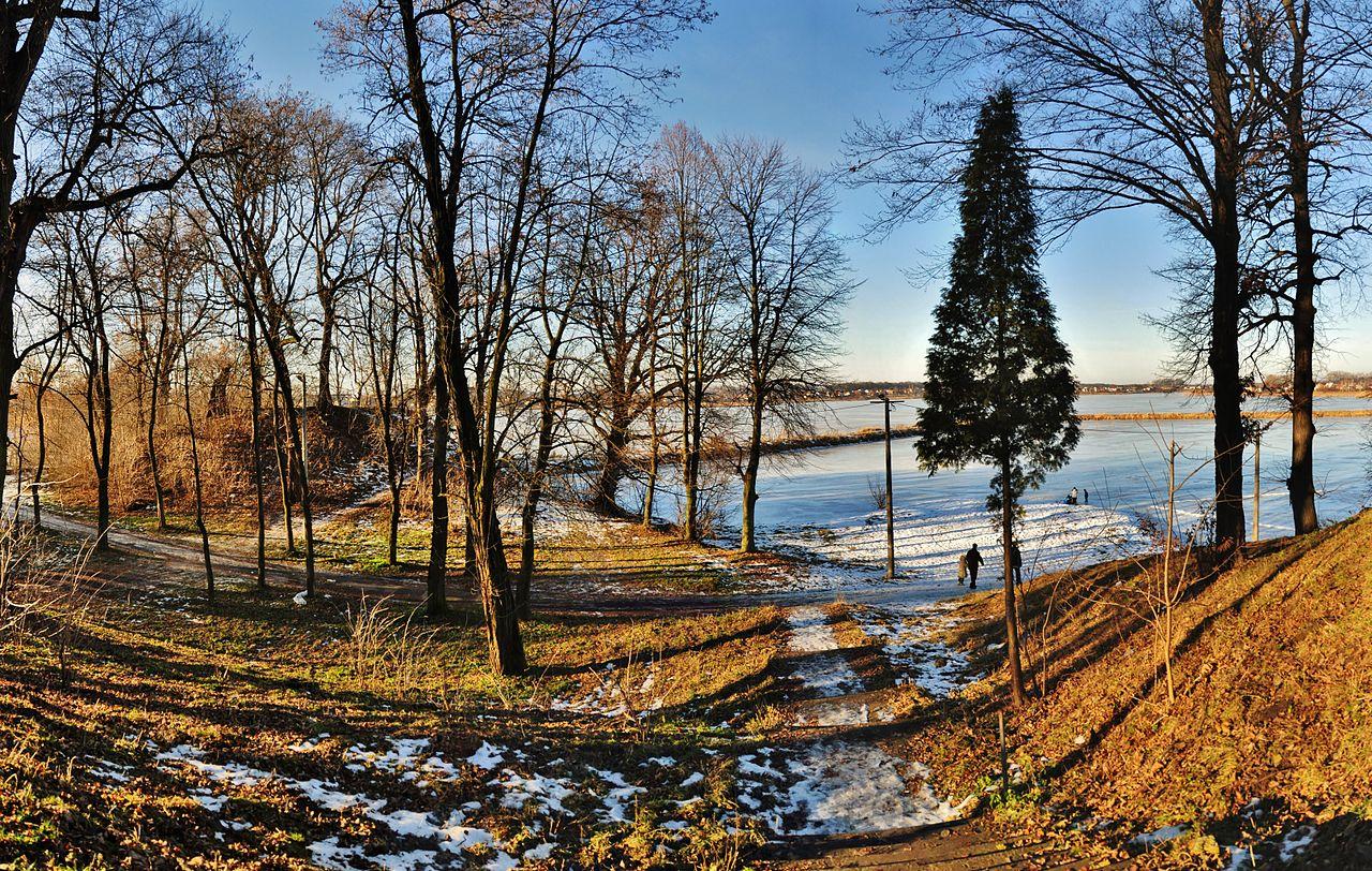 Старый парк XVIII ст.