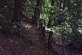 Park prirode Papuk (Phantography) 28.jpg