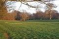 Parkland on the Belvoir Estate - geograph.org.uk - 151992.jpg
