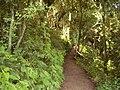 Parque Botánico - panoramio (2).jpg