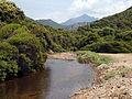 Partinello ruisseau de Pilatri à Caspiu.jpg