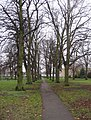 Path across Peter's Field - geograph.org.uk - 1162682.jpg