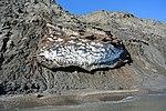 Permafrost in Herschel Island 015.jpg