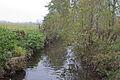 Perthes-en-Gatinais - Rivière l'Ecole - 2012-11-14 - IMG 8166.jpg