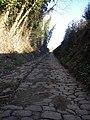 Pescia - Loc. Veneri - Antico acciottolato - panoramio.jpg