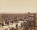 Photographs of the Dalwood Vineyards near Branxton, New South Wales, Australia, 1886.jpg