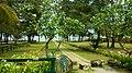 Phuket, 2015 april - panoramio (5).jpg