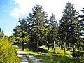 Pian della Rasa-paesaggio 13.jpg