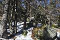 Picos de Urbión Picos de Urbión DSC 7132 (11551071104).jpg