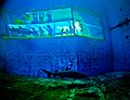 Pittsburgh Zoo Shark Tank Daniel D. Teoli Jr..jpg
