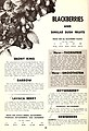 Planting guide (16349262966).jpg