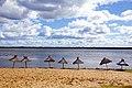 Playa La Paz Entre Ríos (194608927).jpeg