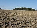 Ploughed field drying in the sun - geograph.org.uk - 1210971.jpg
