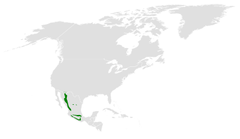 Poecile sclateri distribution map.png