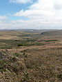Point Reyes Marshall Trail 2.jpg