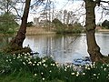 Pond at Coughton Court - geograph.org.uk - 466681.jpg