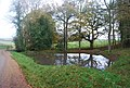 Pond by the Wealdway - geograph.org.uk - 1585014.jpg