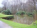 Pond on Mellor and Townscliffe golf course - geograph.org.uk - 782509.jpg