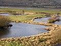 Ponds at RSPB Ynyshir - geograph.org.uk - 583486.jpg